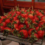 Delicious strawberries!